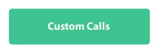 custom_calls